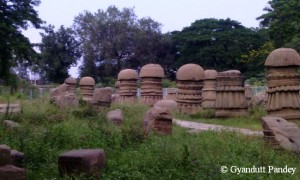 राजबारी, दीमापुर के प्रस्तरखण्ड