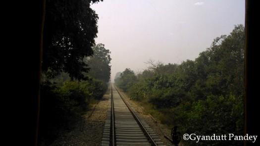 बलरामपुर के पहले जंगल के इलाके से गुजरती रेल लाइन।
