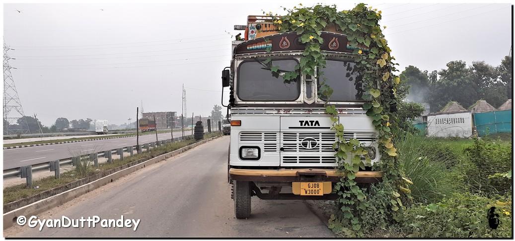 ट्रकों की रफ्तार थामने वालों को थामाजाये