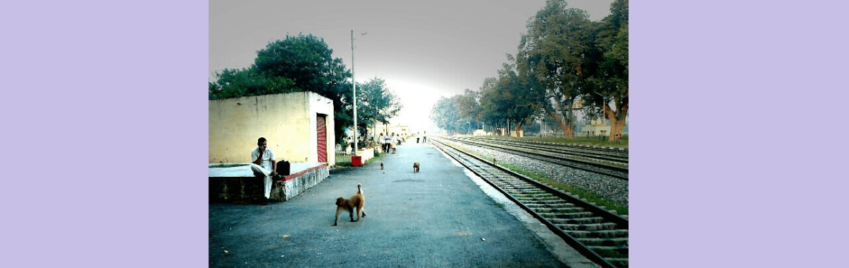 madhosingh railway station platform