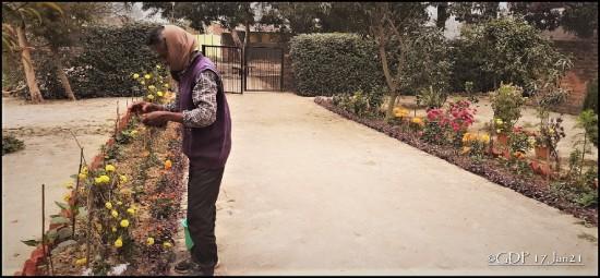 Ramsevak gardener