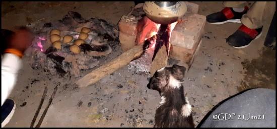 Puppy near fireplace